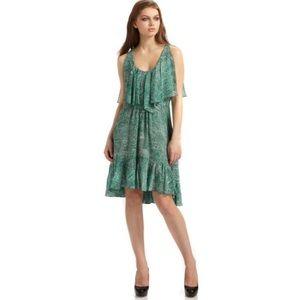 Cynthia Steffe Carey Printed Silk Chiffon Dress 10